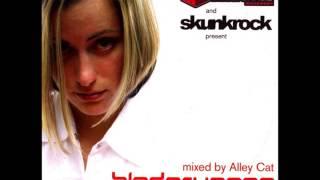 Bladerunnaz 5th Anniversary mix by Alley Cat