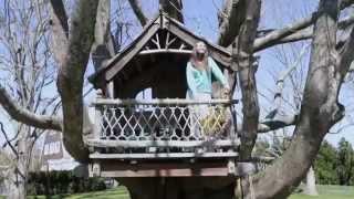 Long Island Designer Treehouses