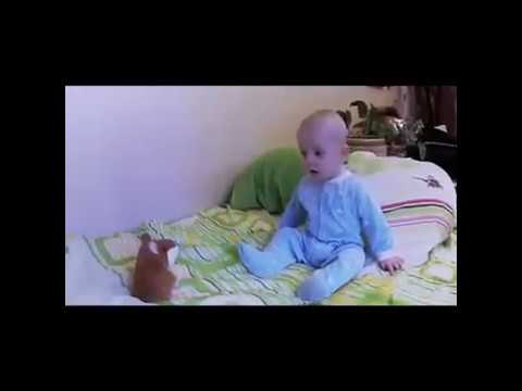 The Perfect baby gift - Talking Hamster & The Perfect baby gift - Talking Hamster - YouTube