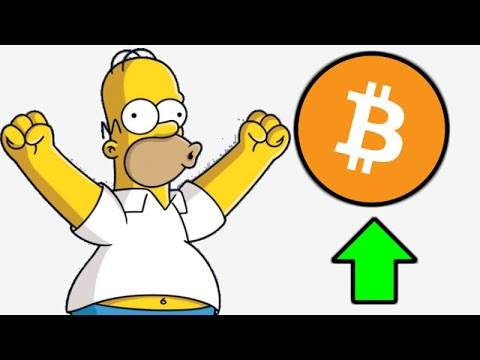 The Simpsons Crypto TV Episode Frinkcoin - Mainstream Crypto Adoption - Bitcoin Bull Run 1000 Days
