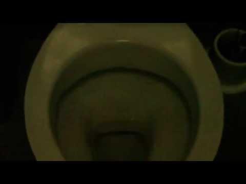 Hospital Toilet #58