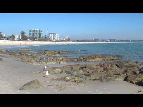 Gold Coast Beaches, Australia, Creative Writing Tours