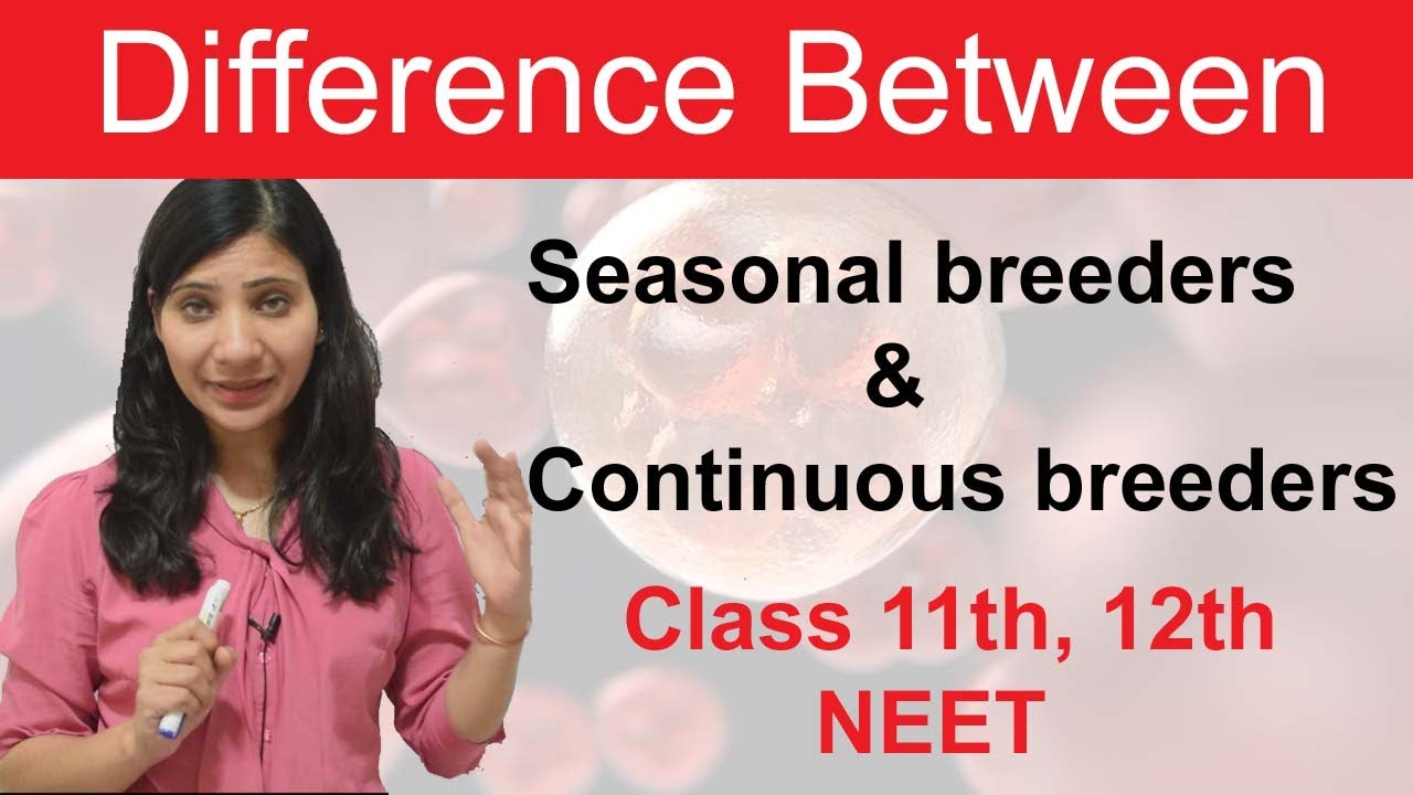 Differentiate seasonal breeders from continuous breeders.   Class 20   NEET    BOARD .