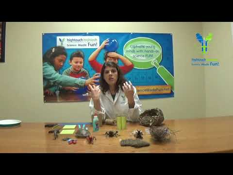 Fun Science Video - Scavenger Hunt Binoculars