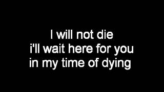 Three Days Grace Time Of Dying Lyrics
