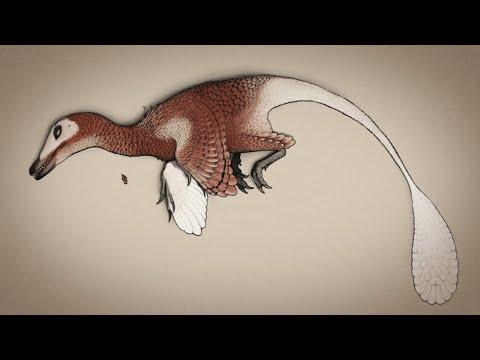 Scientific Issues: Jurassic Park - Part 2