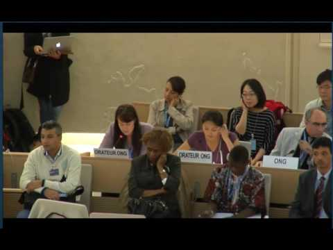 UN Human Rights Council: Freedom of Assembly and Association