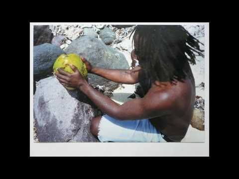 De  Mush Doctor St  Kitts Party Jam Video 2017