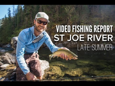 St Joe River - Late Summer Video Fishing Report