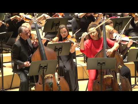 Love and Betrayal double Double Bass Concerto