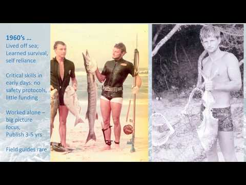 50-Year Marine Conservation Journey: One Adventure at a Time by Rod Salm
