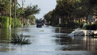 Irma looters will be arrested: Fort Lauderdale mayor