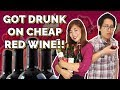CHEAP RED WINE REVIEW!!! WE DRANK SO MUCH WTF