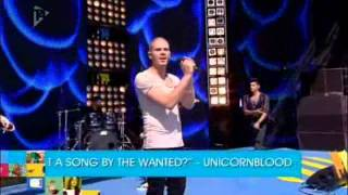 The Wanted - All Time Low [Live at T4 on the Beach 2011]