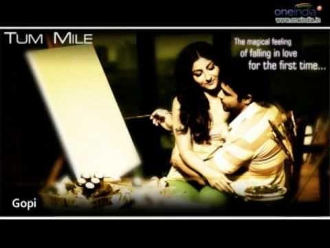 Tu Hi Haqeeqat - Tum Mile | Pritam | Javed Ali