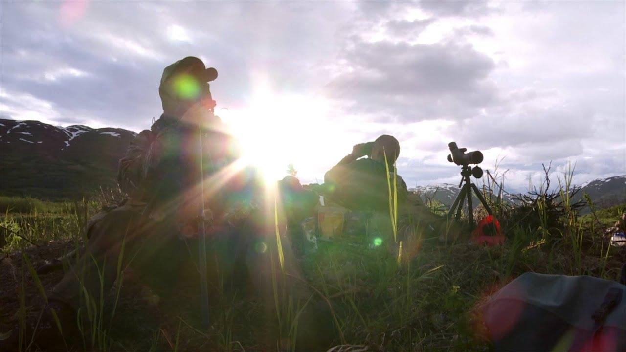 Trichinosis hús hőkezelése, Disznóvágás, vadászat: így védekezhet a trichinellózis ellen