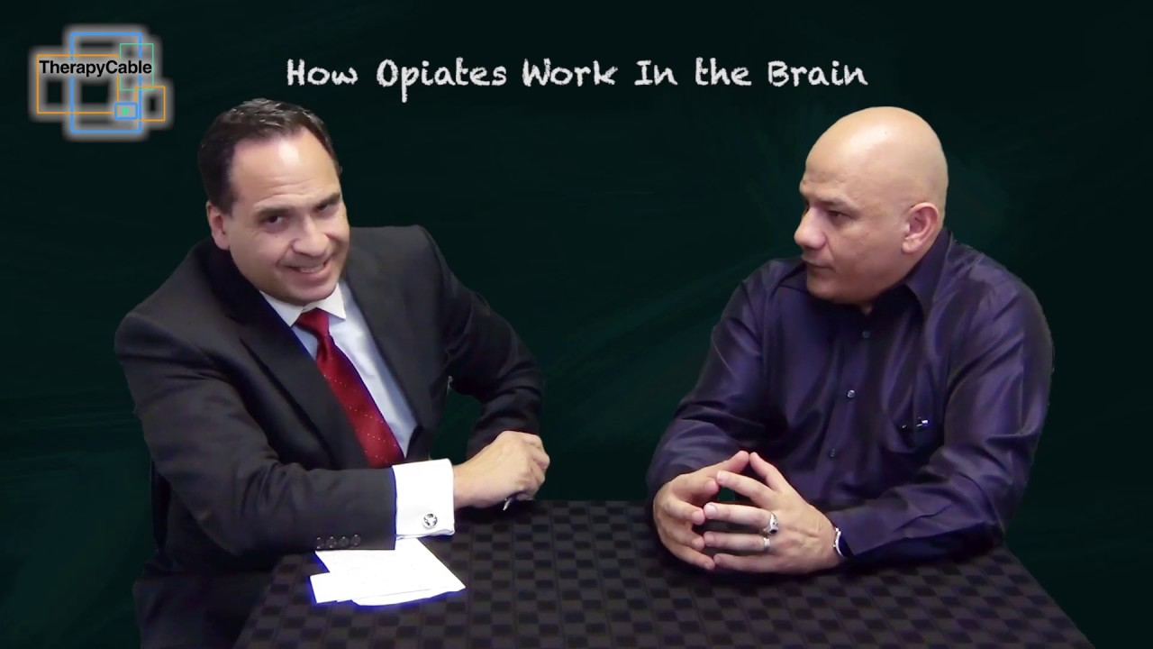 How Opiates Work In the Brain