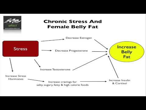 Stress Weight Gain and Menopause