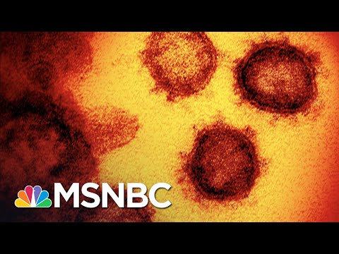 Test Backlogs And Hospitals Nearly Full In States Where COVID-19 Surges | The 11th Hour | MSNBC