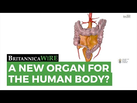 should human organs for sale The sale of organs would make them more available to the poor, and medicaid could help pay for the added cost of transplant surgery gaming the system like jobs did needs to be stopped but we should not add another wrong on.