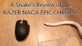A Snake's Review of the Razer Naga Epic Chroma