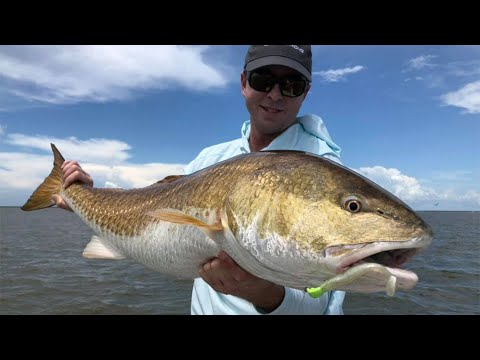 How To Plan A Venice, Louisiana, Fishing Trip (What To Do & What NOT To Do)