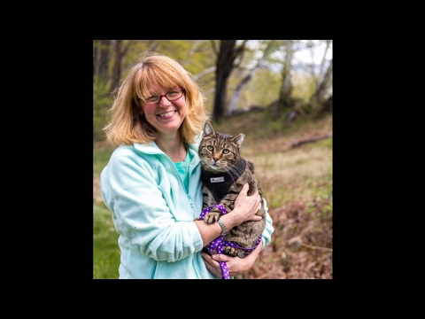 Stacy LeBaron, The Community Cats Podcast: Your Rescue Story + Trap Neuter Return TNR