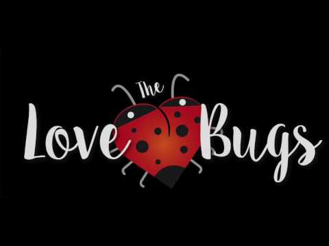 The Love Bugs - Cork Wedding Band