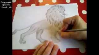 КАК НАРИСОВАТЬ ЛЬВА (очень просто, для начинающих)(Здравствуйте! Предлагаю вашему вниманию видеоролик, где я показываю, как очень просто нарисовать льва...., 2015-01-07T00:02:10.000Z)