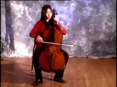 The Main Orchestral String Instruments Are