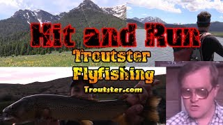🎣 Flyfishing in Montana for Brown Trout - Hit and Run