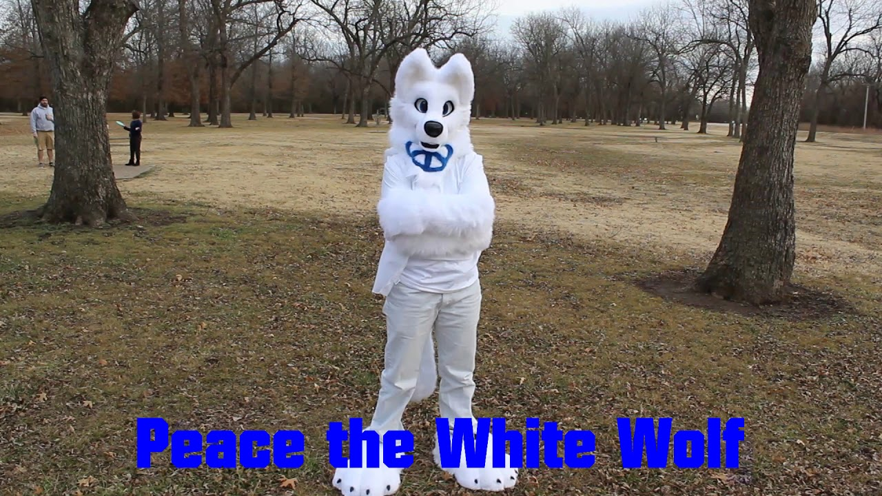Peace the White Wolf Fursuit - YouTube