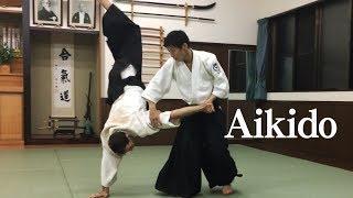 白川竜次 師範 - 合気会6段 Shirakawa Ryuji shihan - aikikai 6th dan...