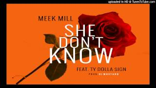 Meek Mill - She Dont Know Feat. Ty Dolla $ign (@deanire @DJMustard)