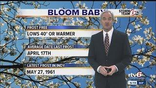 Forecast: Gradual warming trend