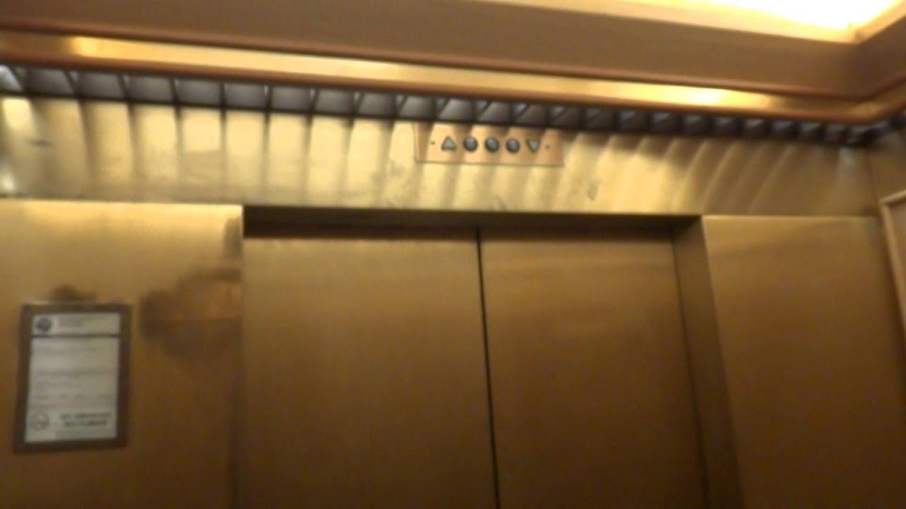 2c8c02759082c International Elevator Dillard s International Plaza Mall Tampa