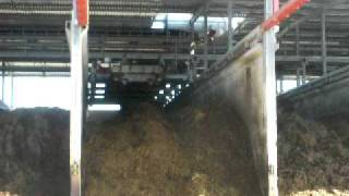 mushroom compost in bunkers,compost farm,straw compost,fase 1,bunker filler, champignon compost
