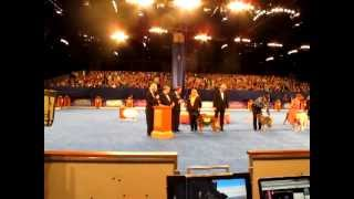 2012 American Kennel Club Awards For K9 Excellence Honoree - Keahi