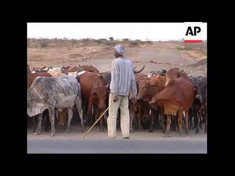 Climate change theatens Masaai herders