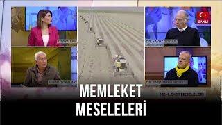 Memleket Meseleleri | Yavuz Dizdar | İsmail Tokalak | Ramazan Kurtoğlu | 15 Ocak