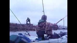 Pacific halibut fishing in eureka ca june 2013 watch for Eureka ca fishing