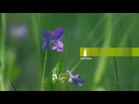 Television in Latvia - LTV1 idents