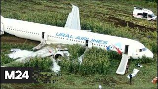 """Смотреть видео """"Вечер"""": жесткая посадка A321 в Подмосковье - Москва 24 онлайн"""