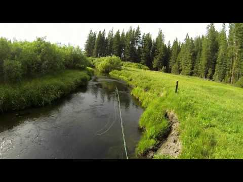 Fly Fishing On Yellow Creek