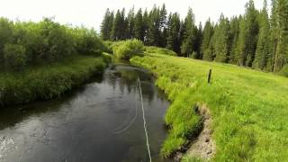 Fly Fishing on Yellow Creek