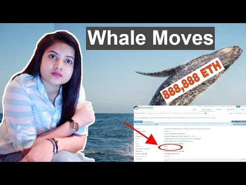 Whale Moves 888,888 Ethereum ETH, Bitcoin, Ripple, VeChain - CryptoCurrency News