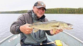 September Walleyes On Nameigos Lake - An Algoma Country Gem!