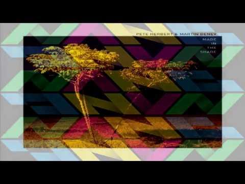 "Pete Herbert & Martin Denev  -   ""Washed Up"""