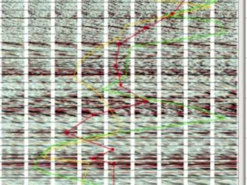 VISTA 2D3D Seismic Data Processing.wmv