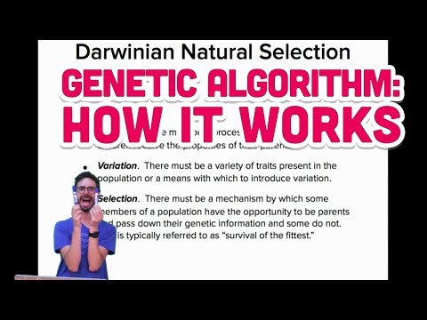 9.2: Genetic Algorithm: How it works - The Nature of Code